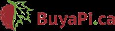 Buyapi Promo Codes