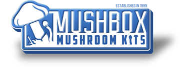 Mushbox Coupons